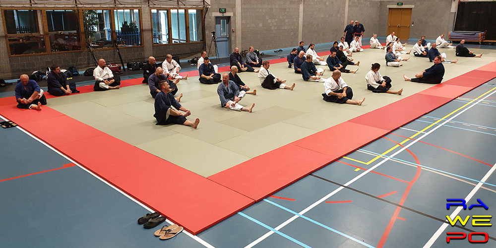 Kubokai International budo3