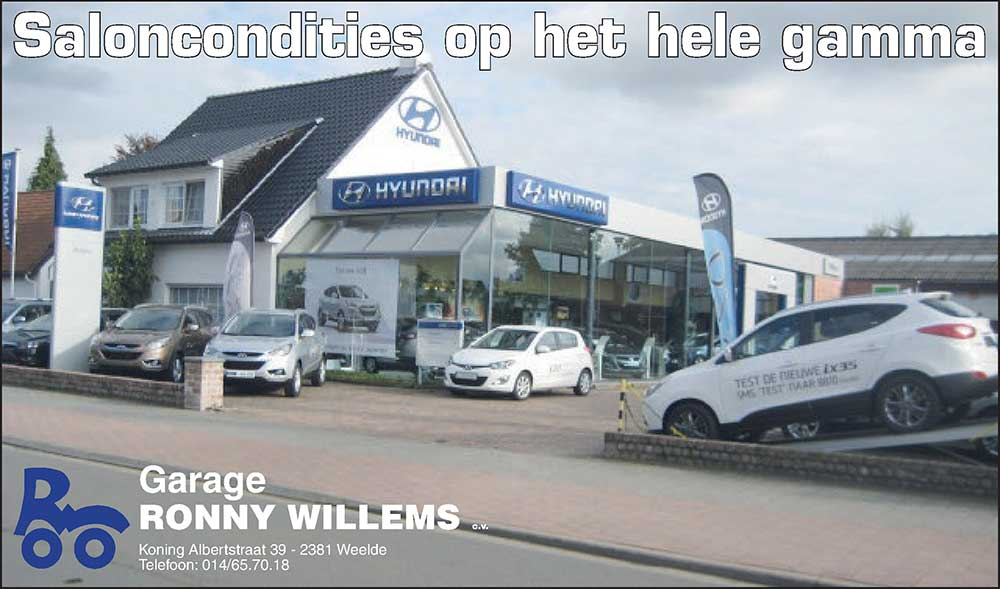 saloncondities Willems banner