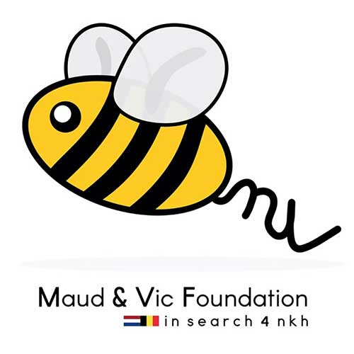 mv foundation